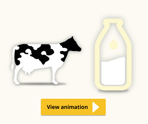 To produce 1L of milk, you need...