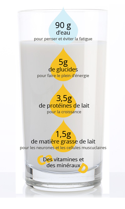 Composition d'un verre de lait 100mL