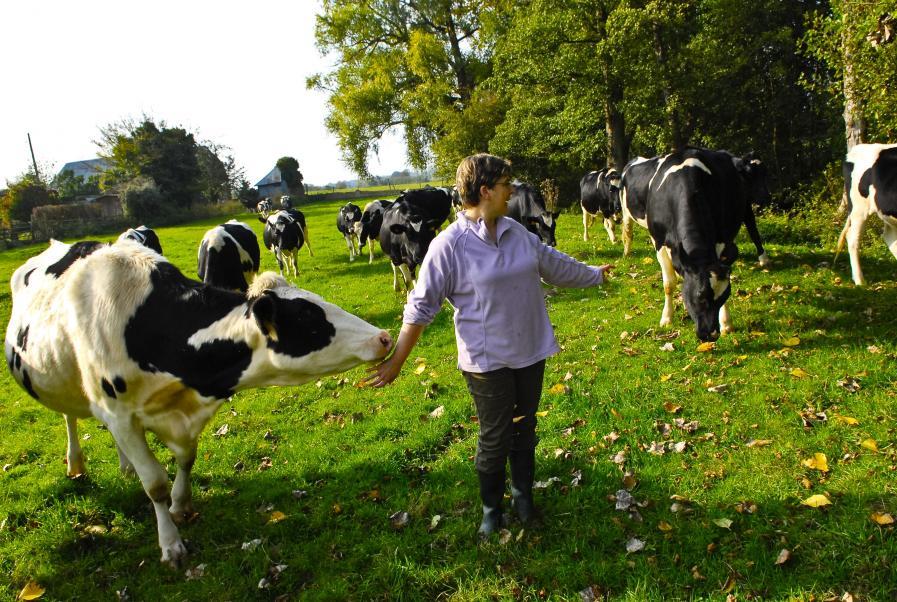 1999 Charte Bonnes pratiques d'élevage