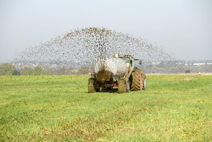 Regulated muck spreading